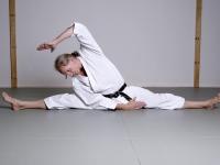 karate6009