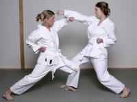 karate6094