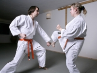 karate6117