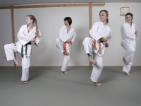 karate6256