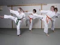 karate6259