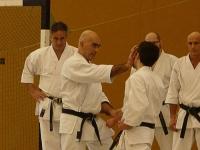 karate_hamburg-lehrgang_maerz2013-ceruti_abate_torre-1_2